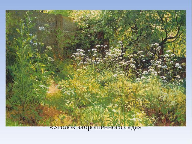 «Уголок заброшенного сада»