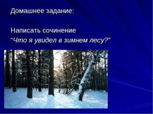 """Домашнее задание: Написать сочинение """"Что я увидел в зимнем лесу?"""""""