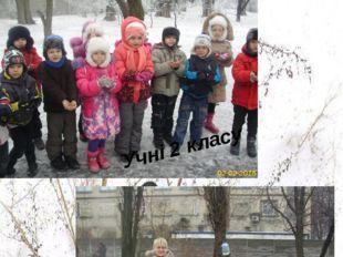 Зима - це чудова пора року. Але вона люта сувора для братів наших менших. То