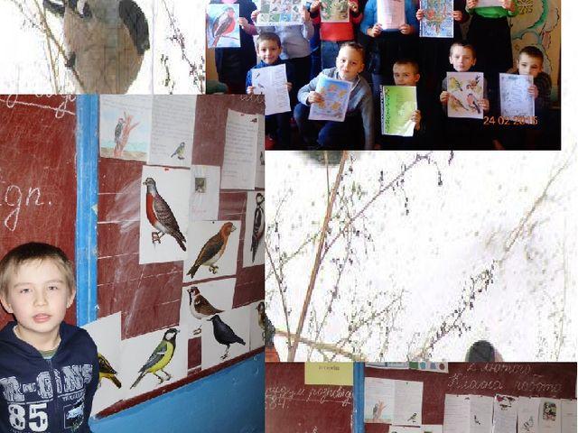 Захід присвячений зимовим птахам