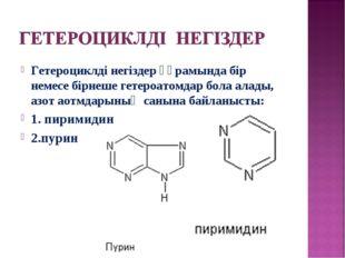 Гетероциклді негіздер құрамында бір немесе бірнеше гетероатомдар бола алады,