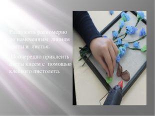 Разложить равномерно по намеченным линиям цветы и листья. Поочередно приклеи
