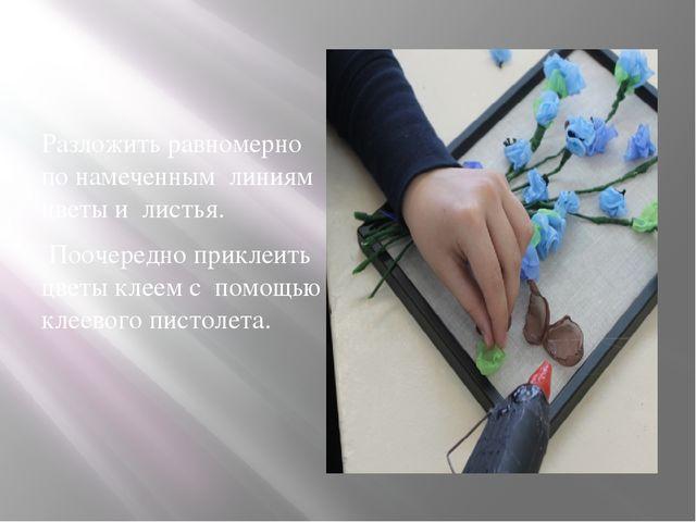 Разложить равномерно по намеченным линиям цветы и листья. Поочередно приклеи...