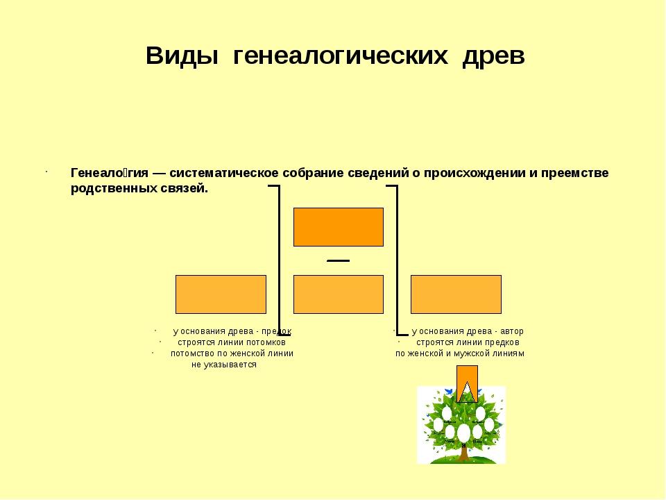 Генеало́гия — систематическое собрание сведений о происхождении и преемстве р...