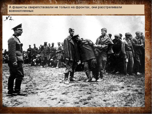 А фашисты свирепствовали не только на фронтах, они расстреливали военнопленных
