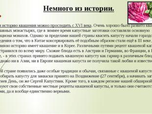 На Руси историю квашения можно проследить с XVI века. Очень хорошо было разв