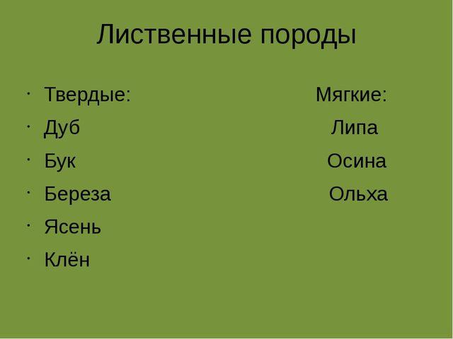 Лиственные породы Твердые: Мягкие: Дуб Липа Бук Осина Береза Ольха Ясень Клён