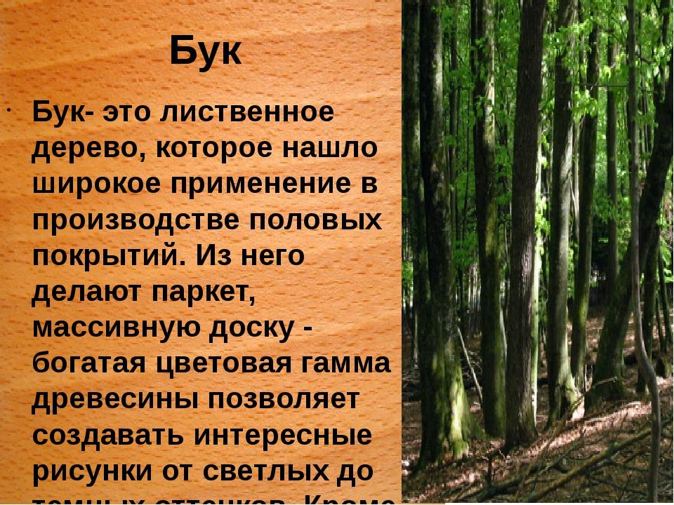 Бук Бук- это лиственное дерево, которое нашло широкое применение в производст...