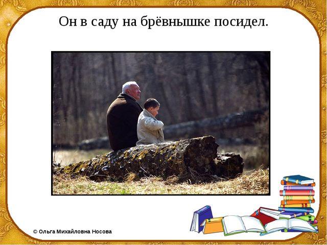 Он в саду на брёвнышке посидел. ©Ольга Михайловна Носова