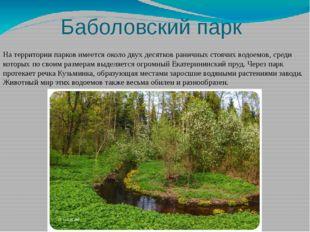 Баболовский парк На территории парков имеется около двух десятков раничных с