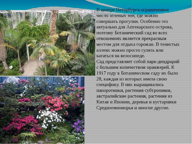 В центре Петербурга ограниченное число зеленых зон, где можно совершать прогу...