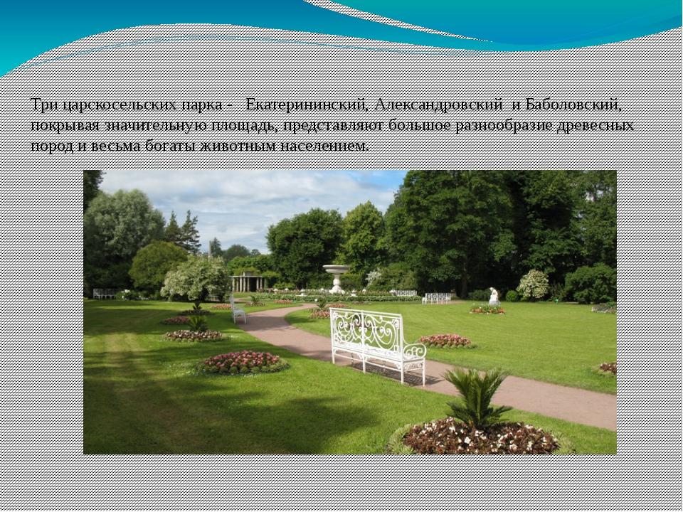 Екатерининский парк Три царскосельских парка - Екатерининский,Александровск...