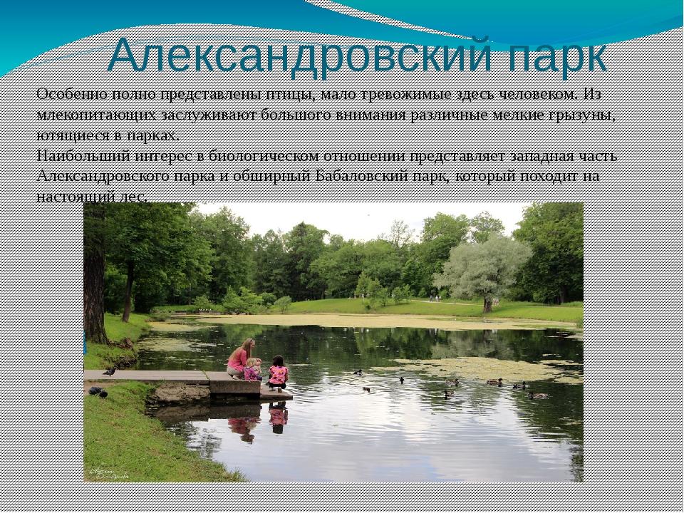 Александровский парк Особенно полно представлены птицы, малотревожимые здес...