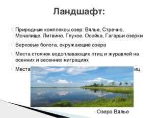 Природные комплексы озер:Вялье, Стречно, Мочалище, Литвино, Глухое, Осейка,