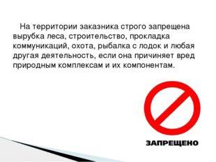 На территории заказника строго запрещена вырубка леса, строительство, прокла