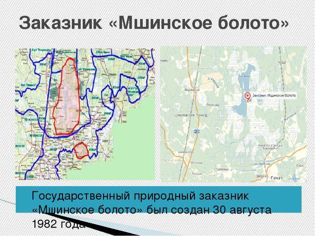 Заказник «Мшинское болото» Государственный природный заказник «Мшинское болот...