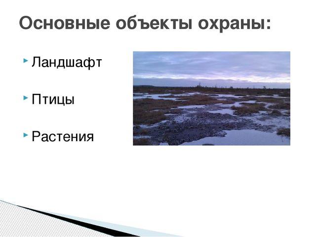 Ландшафт Птицы Растения Основные объекты охраны: