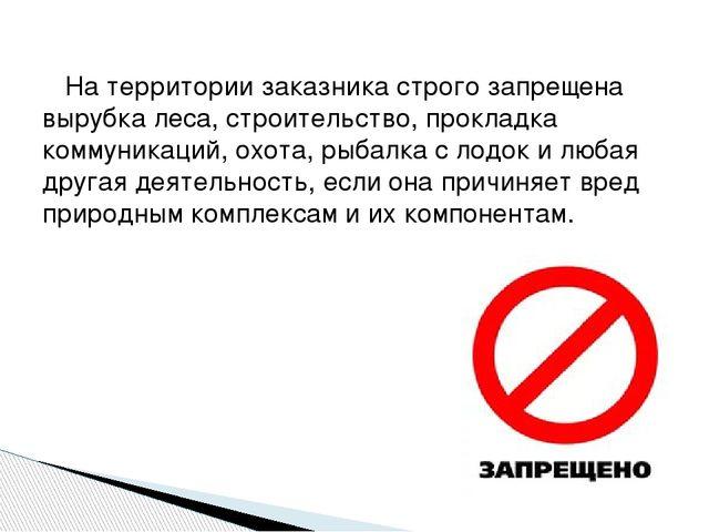 На территории заказника строго запрещена вырубка леса, строительство, прокла...