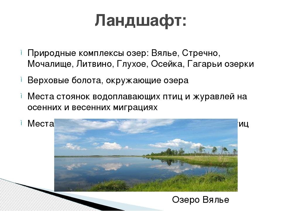 Природные комплексы озер:Вялье, Стречно, Мочалище, Литвино, Глухое, Осейка,...