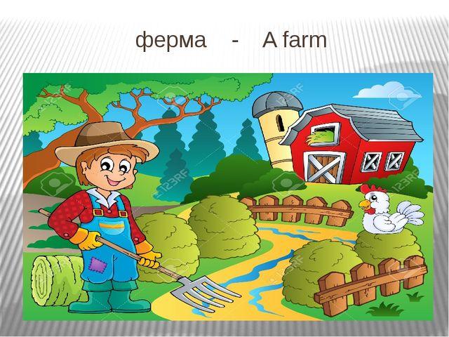 ферма - A farm