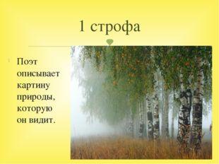 Поэт описывает картину природы, которую он видит. 1 строфа 