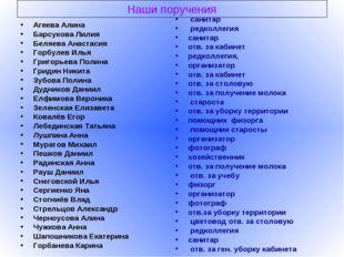Наши поручения Агеева Алина Барсукова Лилия Беляева Анастасия Горбулев Илья Г
