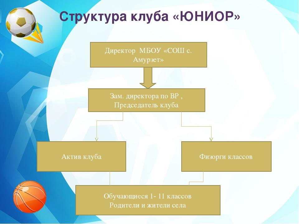 Структура клуба «ЮНИОР» Директор МБОУ «СОШ с. Амурзет» Зам. директора по ВР...