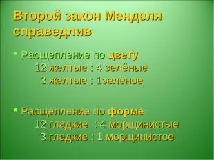 Второй закон Менделя справедлив Расщепление по цвету 12 желтые : 4 зелёные