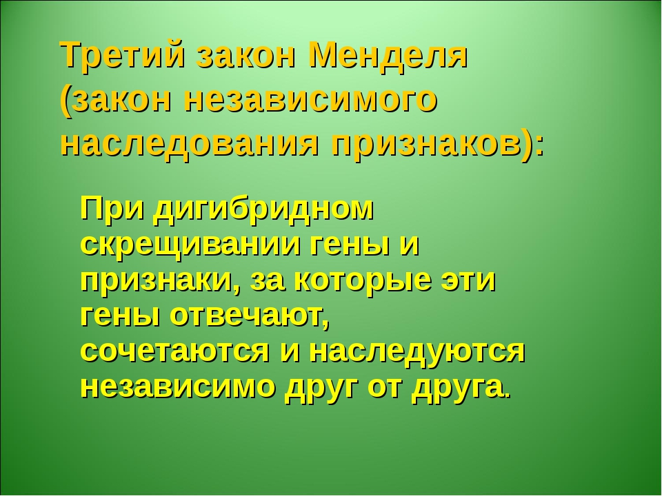 Третий закон Менделя (закон независимого наследования признаков): При дигибри...