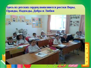 МБОУ «Заинская средняя общеобразовательная школа №1» Здесь из детских сердец