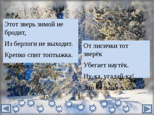 Кто привёз из зимней сказки Вам подарков целый воз? Кто ответит без подсказки