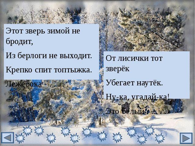 Кто привёз из зимней сказки Вам подарков целый воз? Кто ответит без подсказки...