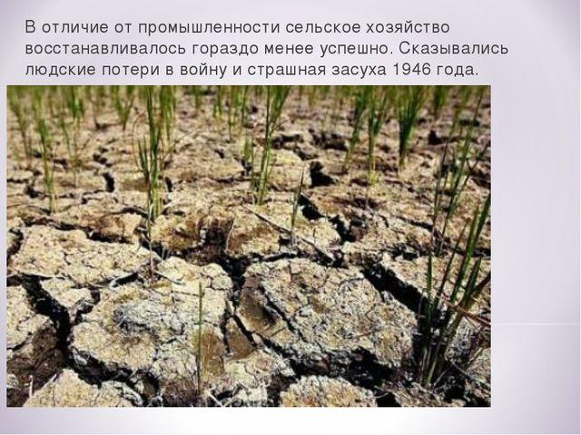 В отличие от промышленности сельское хозяйство восстанавливалось гораздо мене...