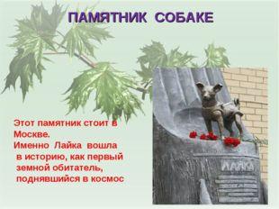 ПАМЯТНИК СОБАКЕ Этот памятник стоит в Москве. Именно Лайка вошла в историю, к