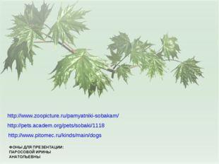 ФОНЫ ДЛЯ ПРЕЗЕНТАЦИИ: ПАРОСОВОЙ ИРИНЫ АНАТОЛЬЕВНЫ http://www.pitomec.ru/kinds