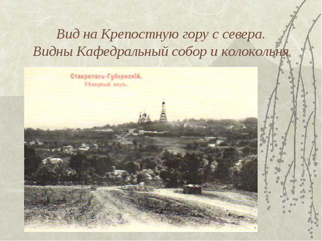 Вид на Крепостную гору с севера. Видны Кафедральный собор и колокольня