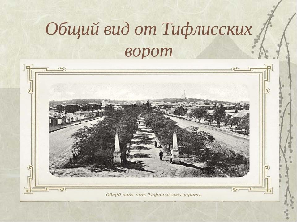 Общий вид от Тифлисских ворот