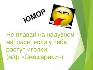 ЮМОР Не плавай на надувном матрасе, если у тебя растут иголки. (м/ф «Смешарик