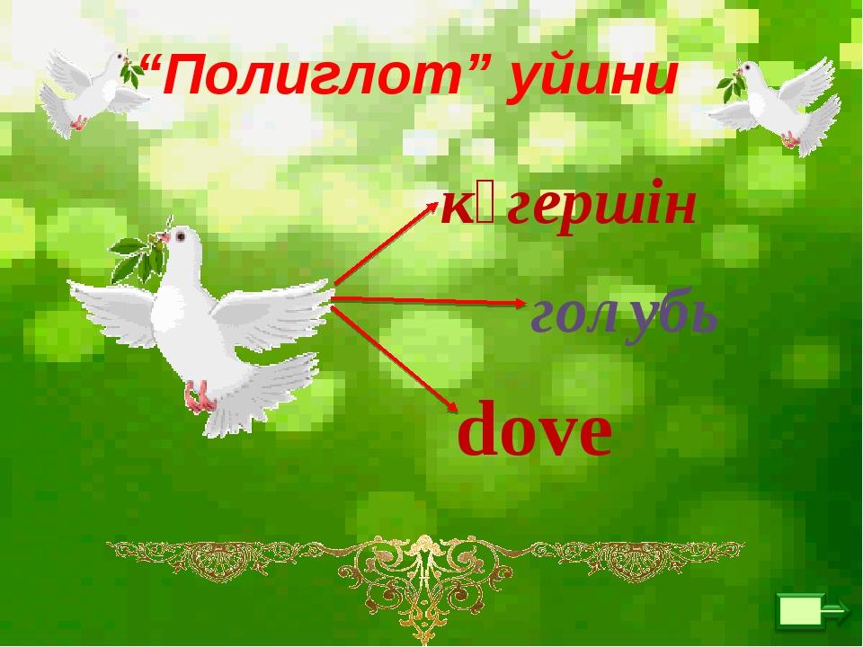 """""""Полиглот"""" уйини көгершін голубь dove"""