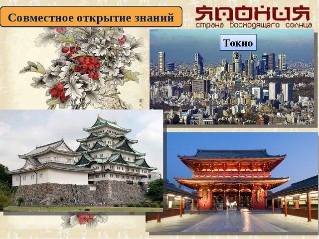 Совместное открытие знаний Токио
