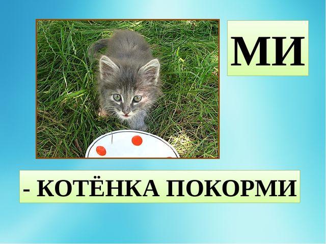 МИ - КОТЁНКА ПОКОРМИ