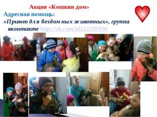 Акция «Кошкин дом» Адресная помощь: «Приют для бездомных животных», группа в