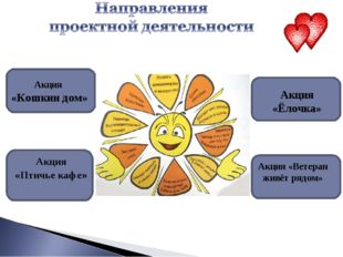 Акция «Ёлочка» Акция «Кошкин дом» Акция «Птичье кафе» Акция «Ветеран живёт ря
