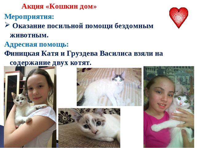 Акция «Кошкин дом» Мероприятия: Оказание посильной помощи бездомным животным...