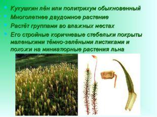Кукушкин лён или политрихум обыкновенный Многолетнее двудомное растение Растё