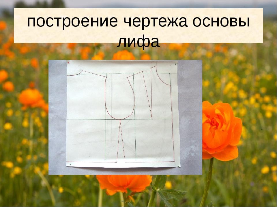 построение чертежа основы лифа