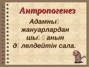 Антропогенез Адамның жануарлардан шыққанын дәлелдейтін сала.