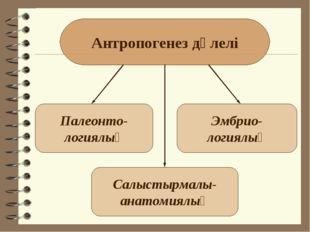 Антропогенез дәлелі Палеонто- логиялық Салыстырмалы- анатомиялық Эмбрио- логи