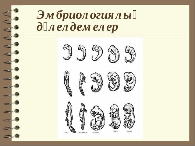 Эмбриологиялық дәлелдемелер