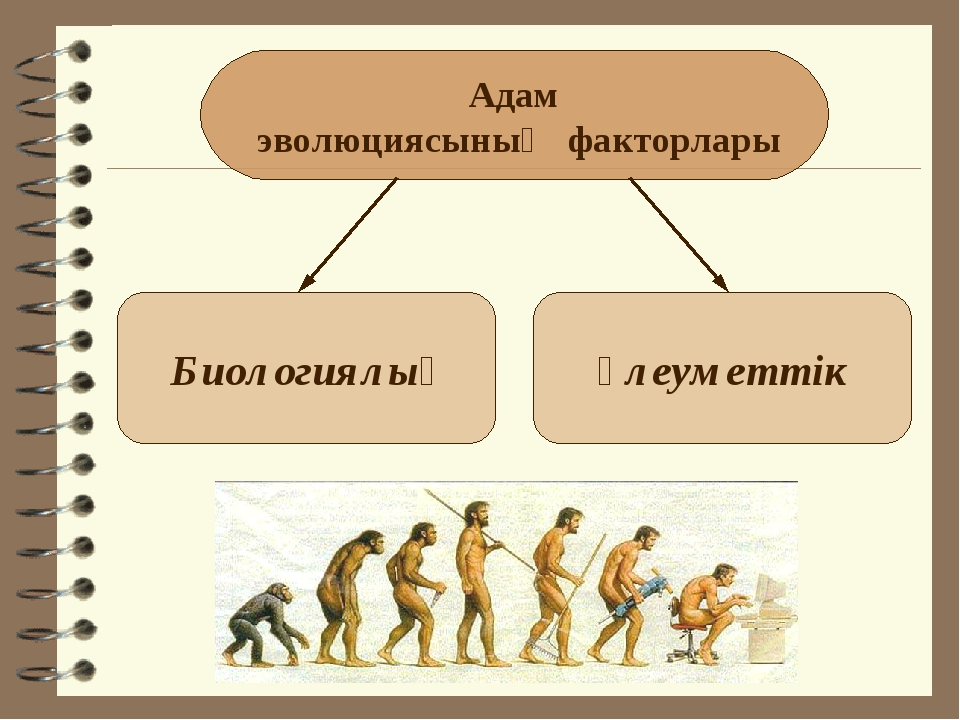 Адам эволюциясының факторлары Биологиялық Әлеуметтік
